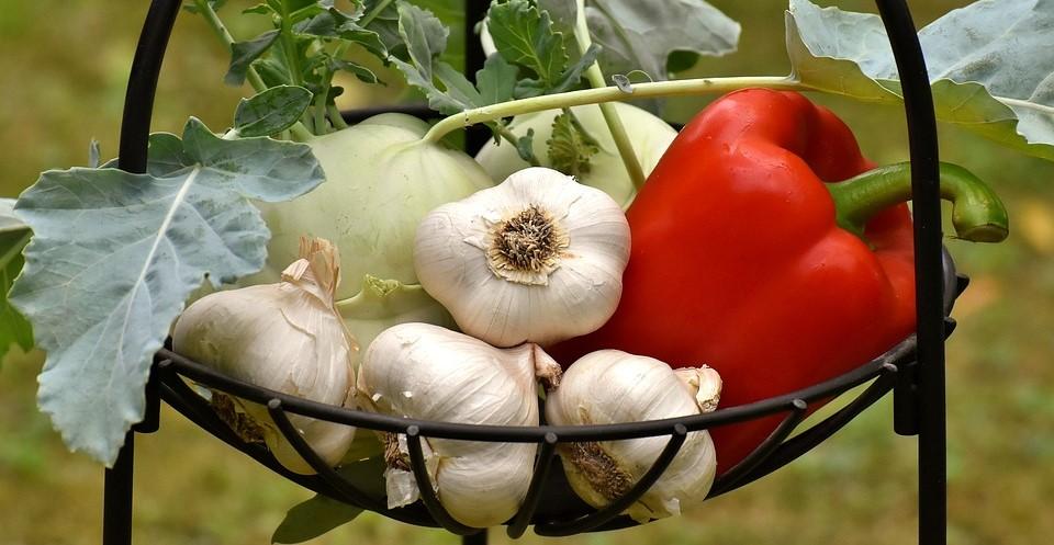 paprika, kedlubna a česnek